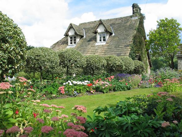 fästingar i trädgården